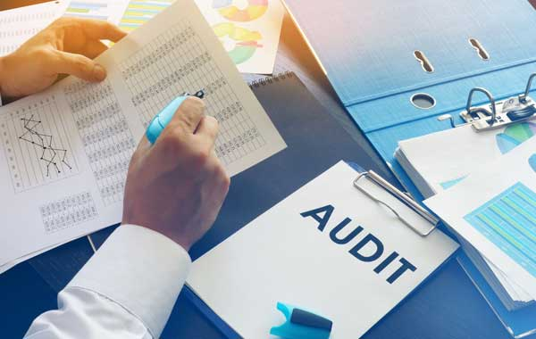 revenue audit and investigation guidance and assistance